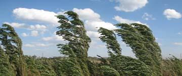 Загадки про ветер