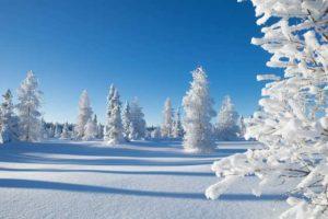 ⛄ Загадки про зиму